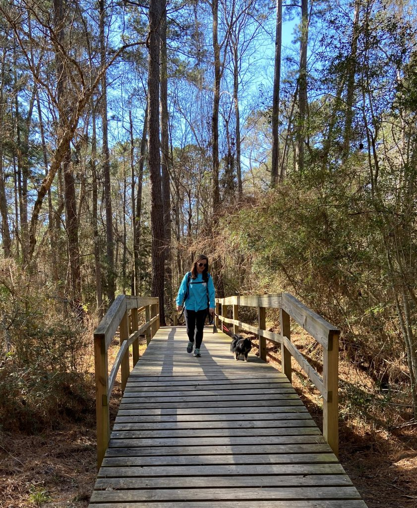 woman and small dog hiking across wooden bridge
